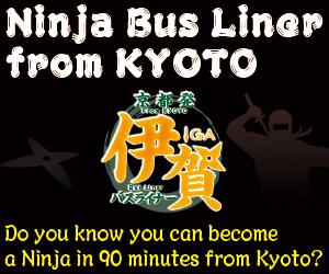 Ninja Liner