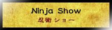 Ninja Experience Plaza Ninja Show